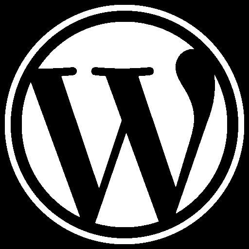 wordpress single white fff 512-WEBDESIGN